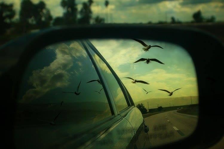 Não fique observando a vida apenas pelo retrovisor, viva o agora